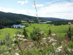 Motorcycle rentals in Jämtland