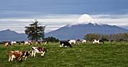 Moto noleggio a Osorno